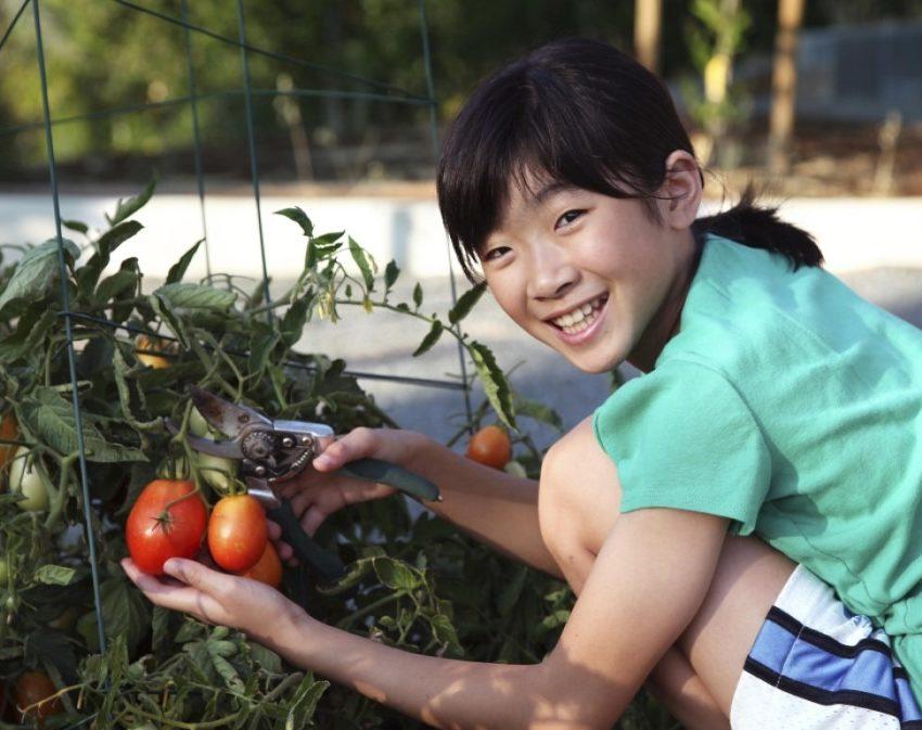 student_gardening1
